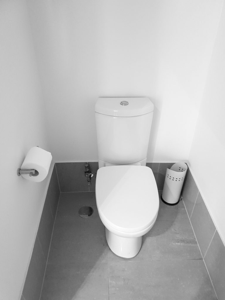 Purchasing a Toilet
